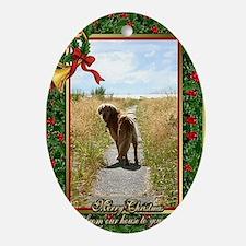 Golden Retriever Dog Christmas Oval Ornament