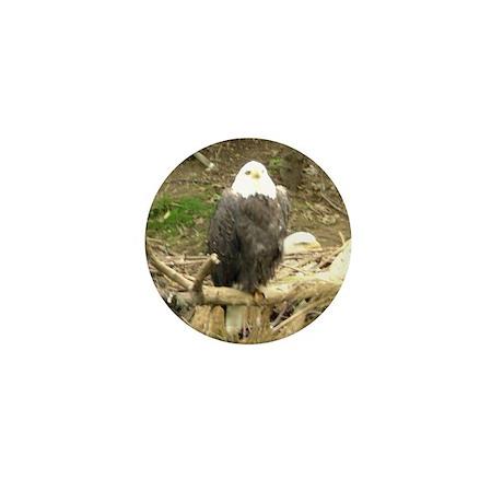 eagles Mini Button (100 pack)