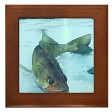 Walleye Ice Framed Tile