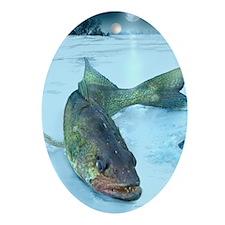 Walleye Ice Oval Ornament