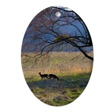 Deer in Cades Cove Oval Ornament