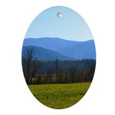 Great Smoky Mountains Oval Ornament