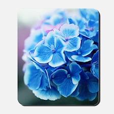 Blue Hydrangeas Mousepad