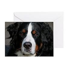 Bernese Dog Sweet Greeting Card
