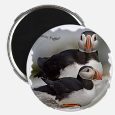 Puffin Tee Magnet