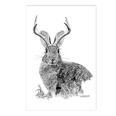 Jackalope Postcards (Package of 8)