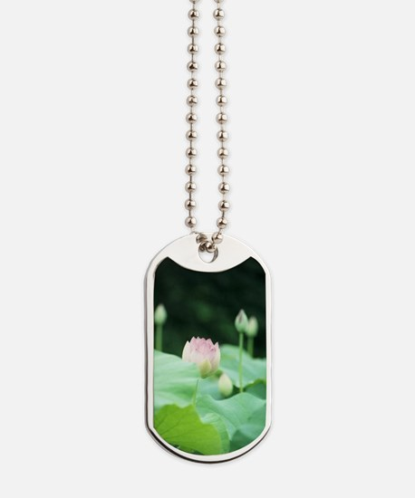 Lotus Rising Dog Tags