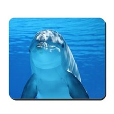 Dolphin 001 Mousepad