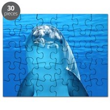 Dolphin 001 Puzzle
