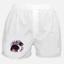 Sheltie Patriotic Boxer Shorts