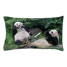 pandas Pillow Case