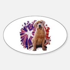 Lab Star Oval Decal