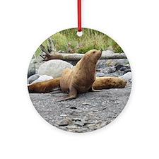 California Sea Lion Alaska Round Ornament