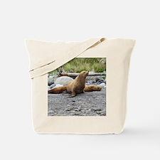 California Sea Lion Alaska Tote Bag