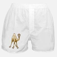 Hump Day Camel Boxer Shorts
