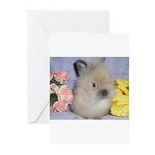 Lionhead Rabbit Greeting Cards (Pk of 10)