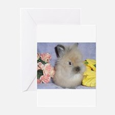 Lionhead Rabbit Greeting Cards (Pk of 10)