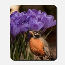 Robin and Crocus Mousepad