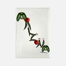 Arizona Chilis Rectangle Magnet