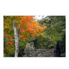 Autumn Postcards (Package of 8)