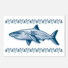 SharksTooth Band Postcards (Package of 8)