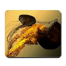Golden Jelly Mousepad