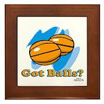 Got Basketballs? Framed Tile