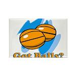 Got Basketballs? Rectangle Magnet
