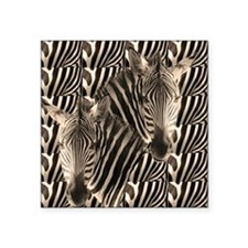 "Optial Illusion Zebra Square Sticker 3"" x 3"""