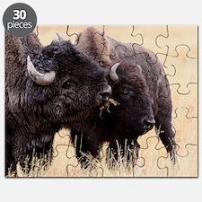 bison friendship Puzzle
