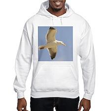 Seagull Hoodie