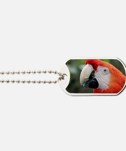 Scarlet Macaw Dog Tags