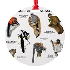 Lemurs of Madagascar Ornament