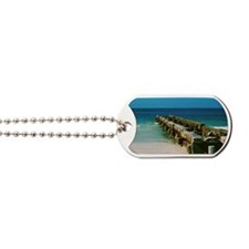 Siesta Pier Dog Tags