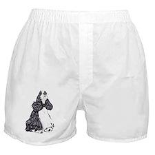 Cocker Spaniel BW Parti Boxer Shorts