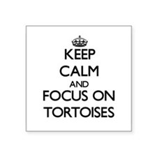 Keep calm and focus on Tortoises Sticker
