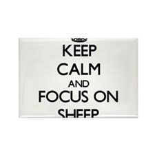 Keep calm and focus on Sheep Magnets