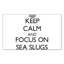 Keep calm and focus on Sea Slugs Decal