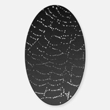 Sparkling Spiderweb tall Decal
