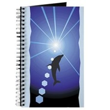 Dolphin Journal: Dolphin in Daylight