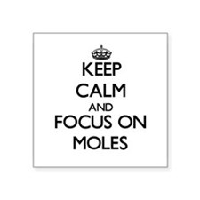 Keep calm and focus on Moles Sticker