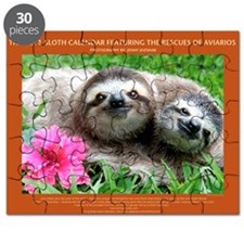 2014 Sloth Calendar Featuring Sunshine and  Puzzle