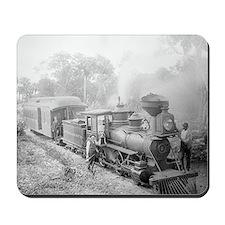 Jupiter and Lake Worth Railroad Mousepad