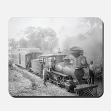 Jupiter and Lake Worth Railroad Mousepad
