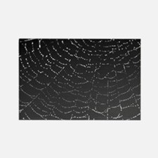 Shimmering Spiderweb Lg wide Rectangle Magnet