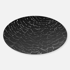Shimmering Spiderweb Lg wide Decal