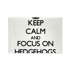 Keep calm and focus on Hedgehogs Magnets