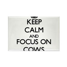 Keep calm and focus on Cows Magnets