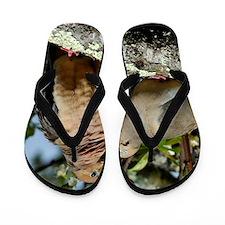 Love doves peace and joy Flip Flops