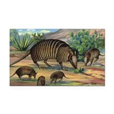 Armadillo Rectangle Car Magnet
